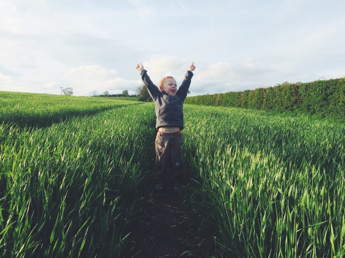 happy-child-in-the-fields-cheering-symbolizing-the-brand-experience-of-user-experience